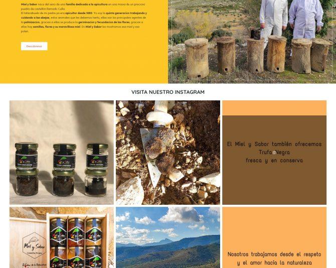 Presentamos la Tienda Online Miel y Sabor de la  Castellón mielysabor.com + Autoadministrable + Tienda Online
