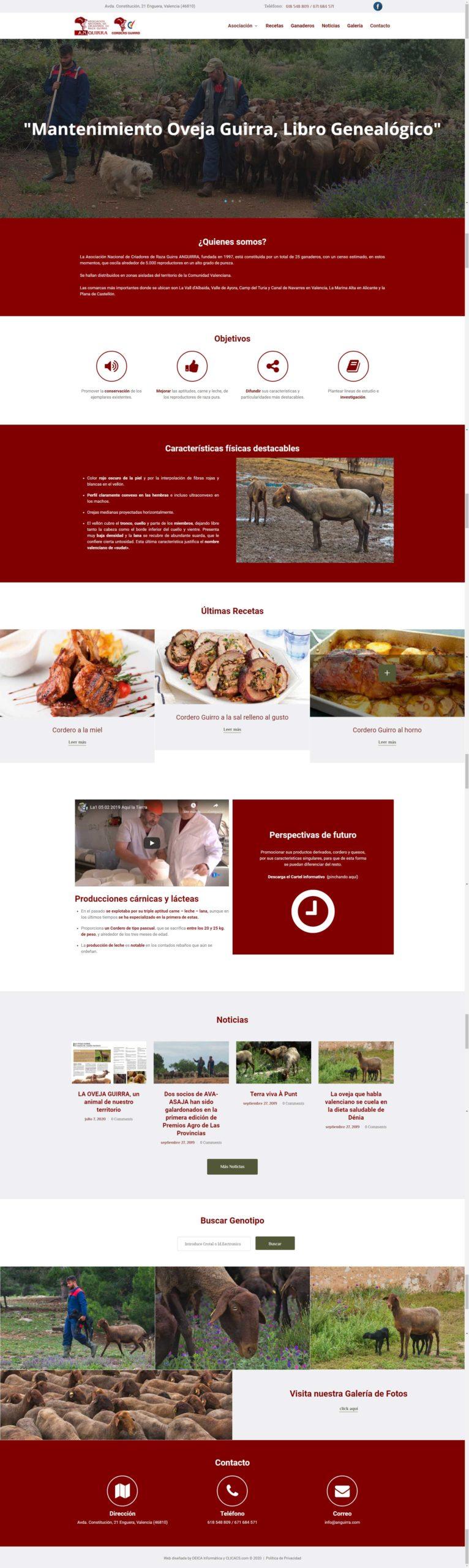 diseño de página web de anguirra